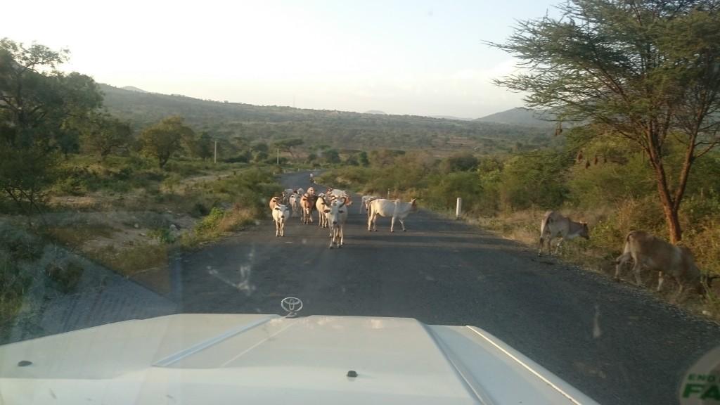 Ethiopia road 2